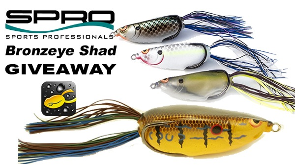 SPRO Bronzeye Shad Giveaway at Scout.com