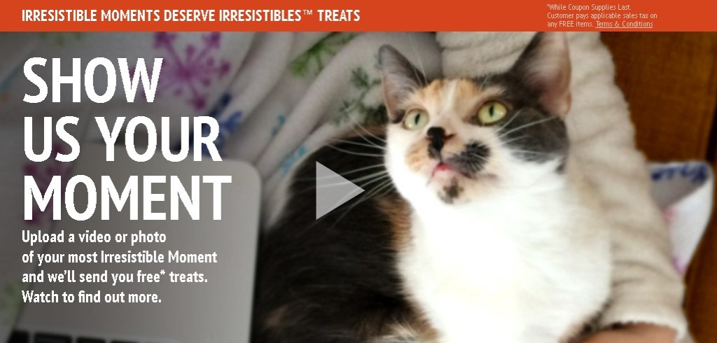 Upload a video or photo to win free Meow Mix Treats