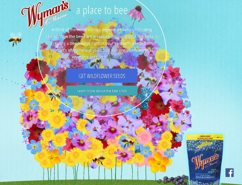 WIN one year's worth of Wyman's products