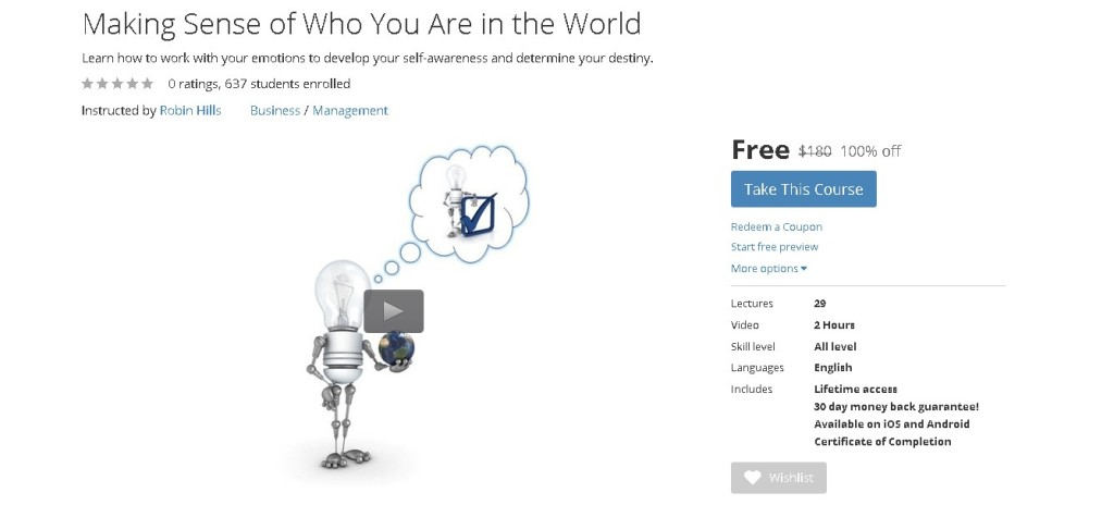 FREE Udemy Course on Making Sense of Who You Are in the World