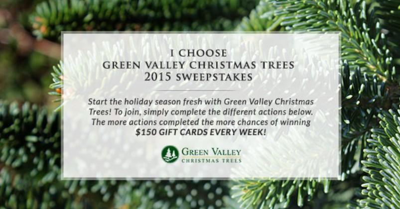 usa green valley christmas trees 2015 sweepstakes