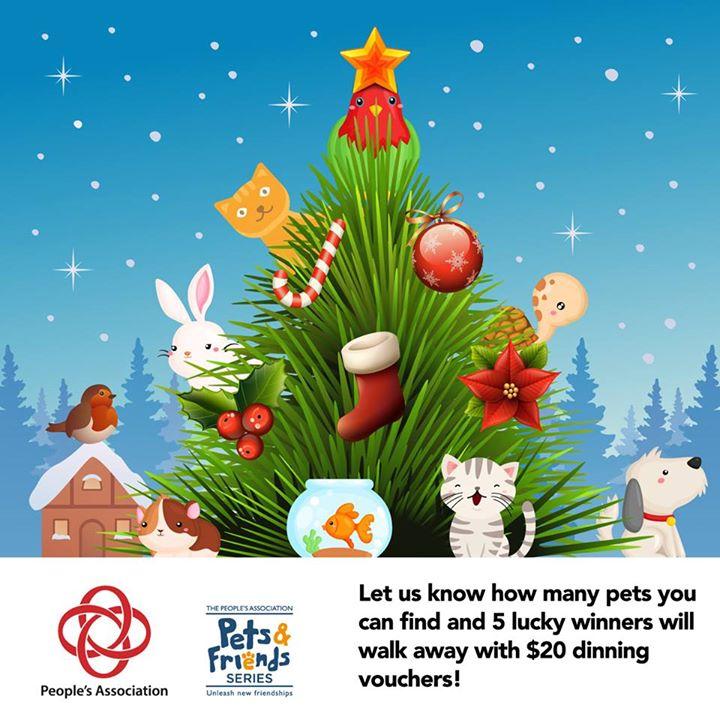 WIN $20 dinning vouchers at Pets & Friends