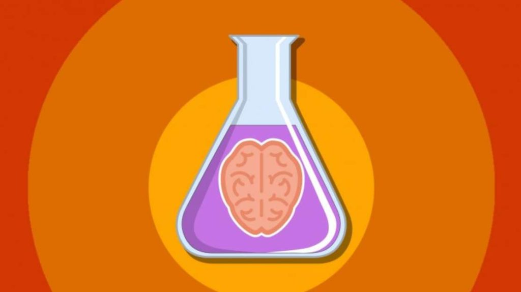 #Free Udemy Course on 5 Amazing Psychology Experiments